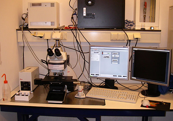 leica_dm6000_hubrecht_institute
